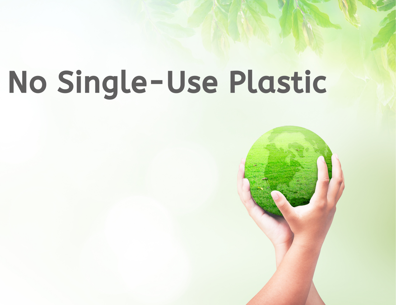 """Two hands holding a green globe next to the words """"No single-use plastic""""."""