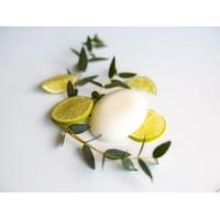 Lime and Tea Tree Solid Deodorant Bar