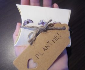 Gift Box with 10 Wildflower Seedballs